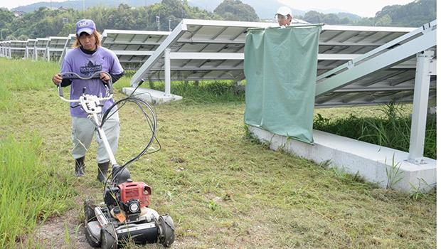 7人の障害者が草刈りなどの仕事をしている