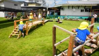 職員が植えた天然芝生の上で伸び伸びと遊ぶ子どもたち