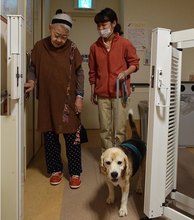 犬と施設内を散歩